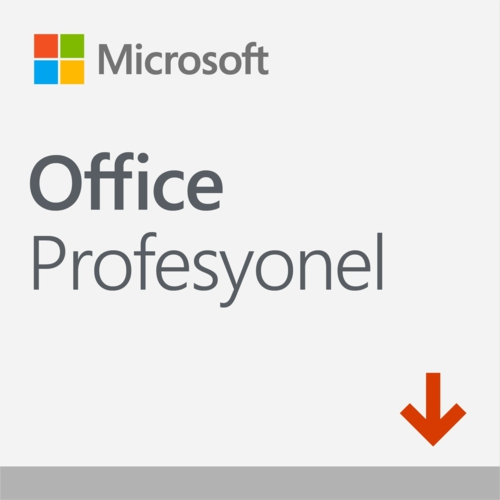 MS Office Pro 2019 ESD Lisans 269-17072